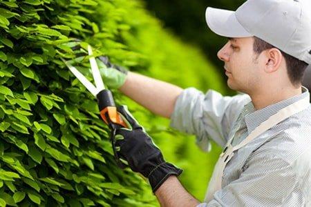 Садовник-озеленитель