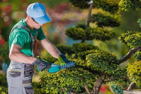 Работа садовника-озеленителя в Чехии