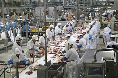 Работа для работника на мясокомбинат в Чехии