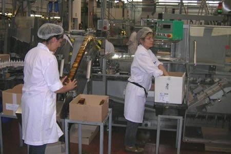Работа для студентов на заводе в Германии