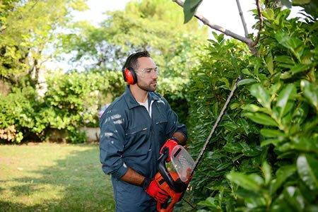 Работа для ландшафтника - садовника в Литве