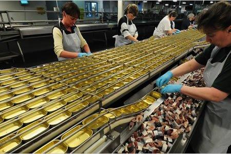 Работа для сотрудника на крупном консервном заводе