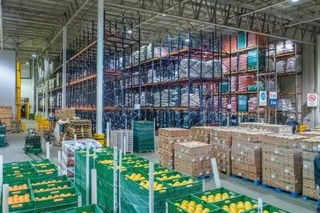 Работа для упаковщика ововощей, фруктов на складе