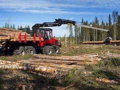 Работа в лесном хозяйстве для водителя лесной машины