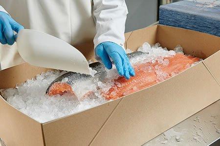 Работа для упаковщика морепродуктов на производстве