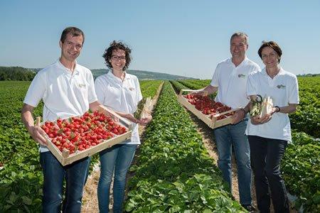 Работа для студентов на ферме по сбору урожая