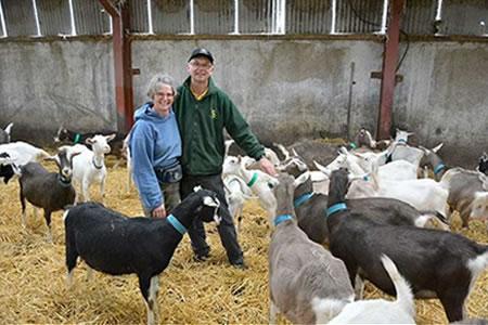 Работа для семейных пар на ферме