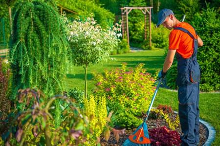 Уборка и озеленения территории