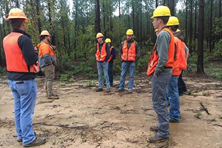 Работа для неквалифицированного работника лесного хозяйства